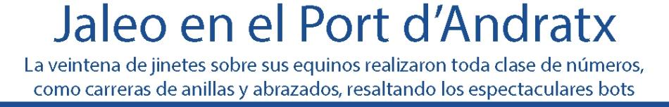 JALEO EN EL PORT ANDRATX